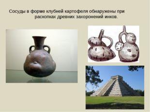 Сосуды в форме клубней картофеля обнаружены при раскопках древних захоронений