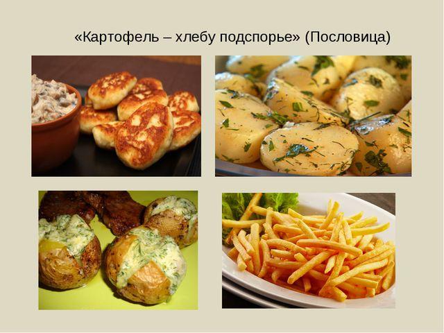 «Картофель – хлебу подспорье» (Пословица)