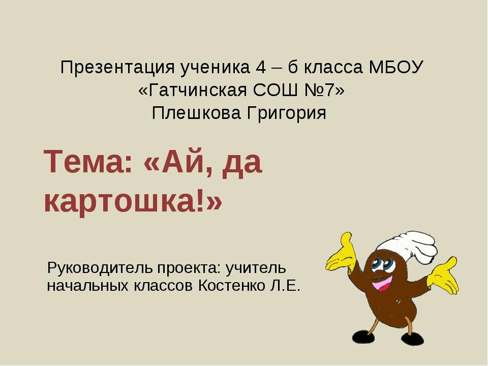 Презентация ученика 4 – б класса МБОУ «Гатчинская СОШ №7» Плешкова Григория Т...