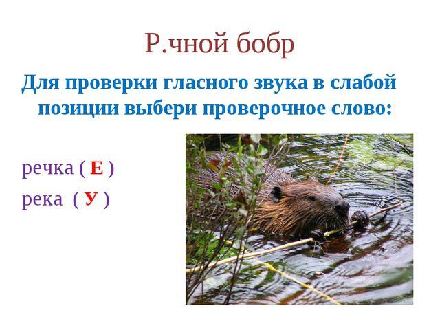 Р.чной бобр Для проверки гласного звука в слабой позиции выбери проверочное с...