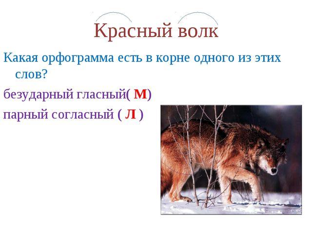 Красный волк Какая орфограмма есть в корне одного из этих слов? безударный гл...