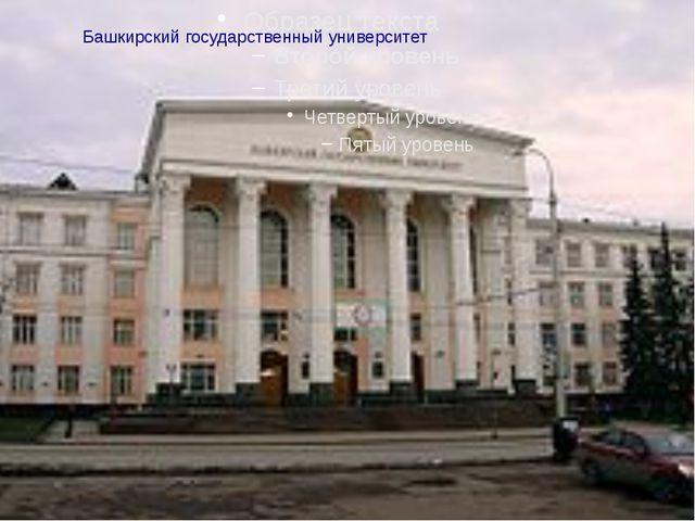 Башкирский государственный университет