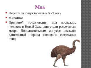 Моа Перестали существовать к XVI веку Животное Причиной исчезновения моа посл