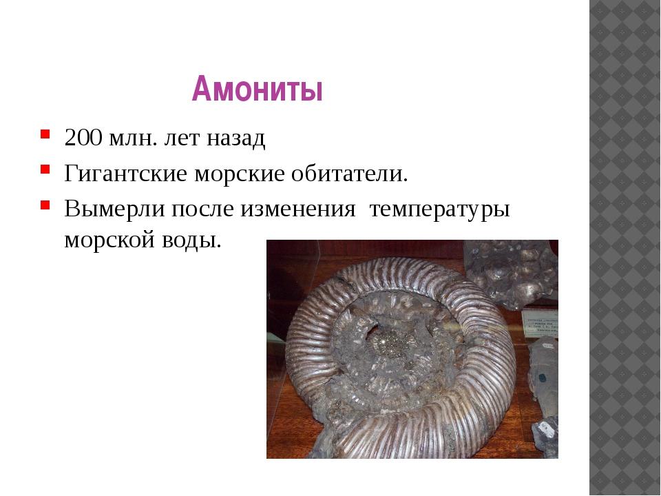 Амониты 200 млн. лет назад Гигантские морские обитатели. Вымерли после измене...