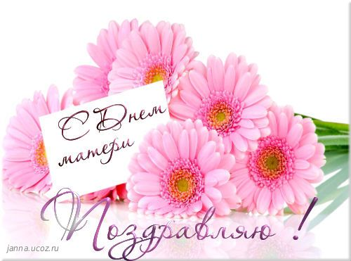 http://janna.ucoz.ru/_nw/25/33164922.jpg