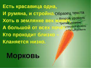 Морковь Есть красавица одна, И румяна, и стройна. Хоть в землянке век живёт,