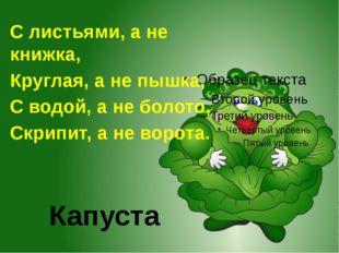 Капуста С листьями, а не книжка, Круглая, а не пышка, С водой, а не болото, С