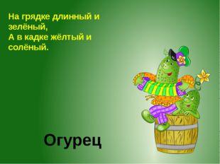 Огурец На грядке длинный и зелёный, А в кадке жёлтый и солёный.
