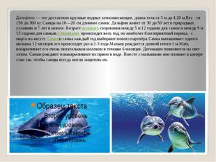 Дельфины — это достаточно крупные водные млекопитающие, длина тела от 3 м до