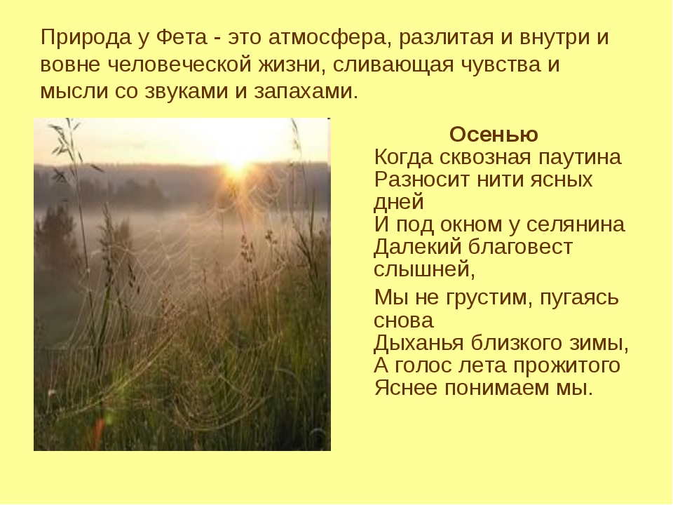 Природа у Фета - это атмосфера, разлитая и внутри и вовне человеческой жизни,...