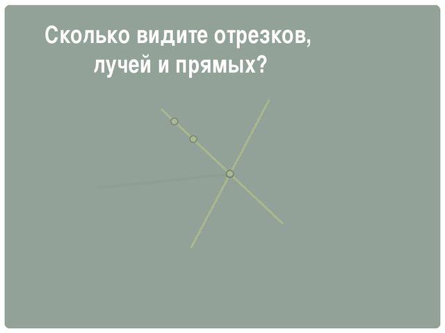 Сколько видите отрезков, лучей и прямых?