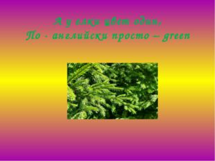 А у елки цвет один, По - английски просто –green