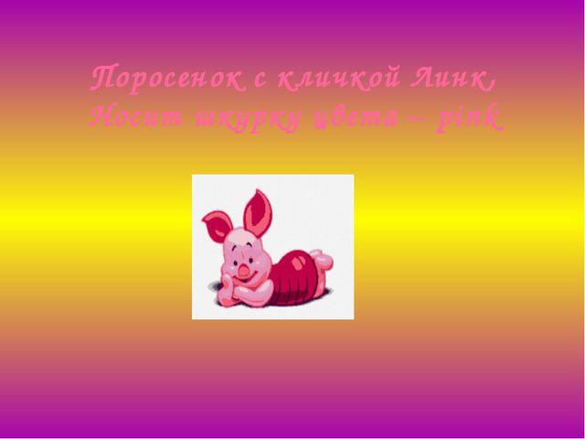 Поросенок с кличкой Линк, Носит шкурку цвета –pink