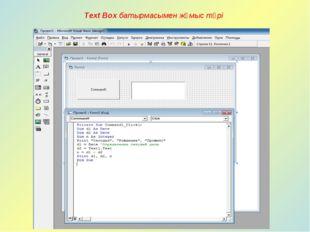 Text Box батырмасымен жұмыс түрі
