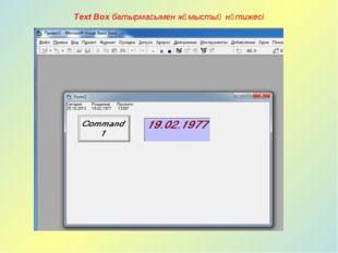 Text Box батырмасымен жұмыстың нәтижесі