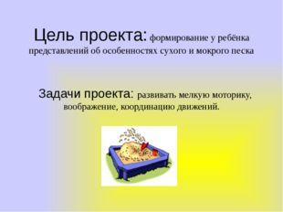 Цель проекта: формирование у ребёнка представлений об особенностях сухого и м