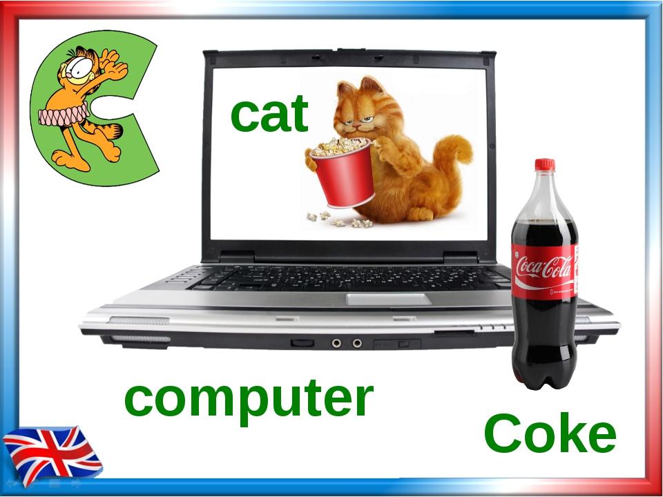 Coke computer cat