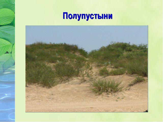 Полупустыни