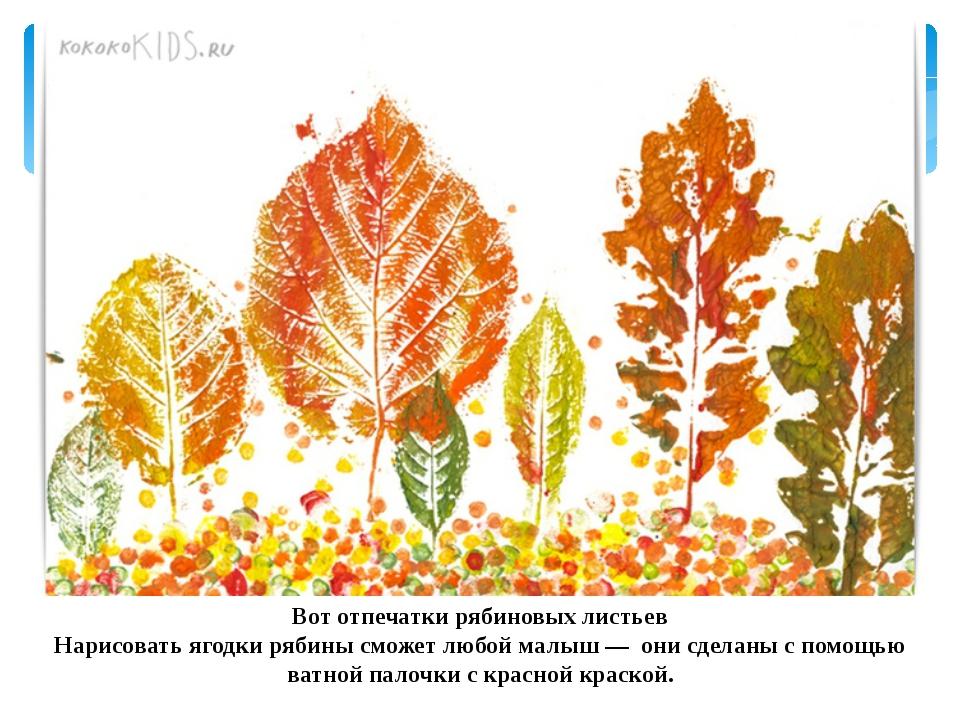 Вот отпечатки рябиновых листьев Нарисовать ягодки рябины сможет любой малыш —...