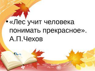 «Лес учит человека понимать прекрасное». А.П.Чехов