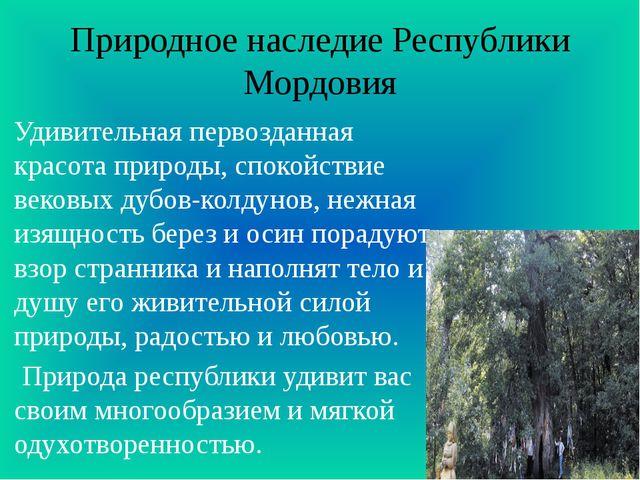 Природное наследие Республики Мордовия Удивительная первозданная красота прир...