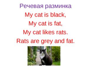 Речевая разминка My cat is black, My cat is fat, My cat likes rats. Rats are
