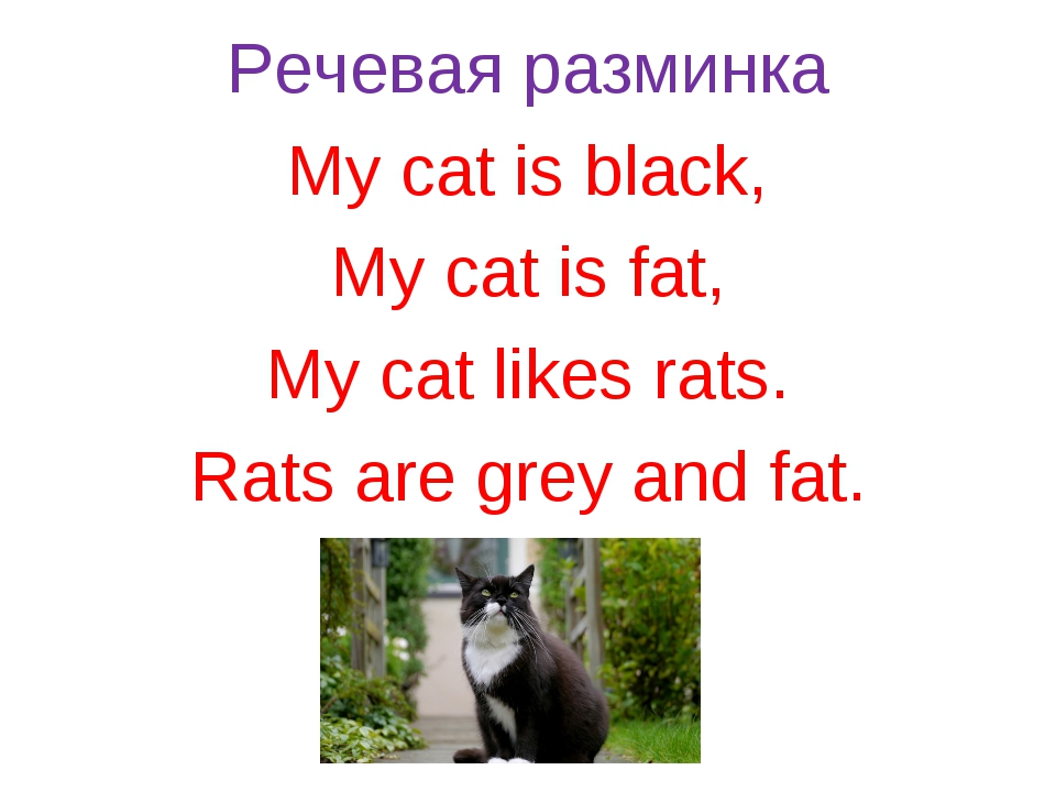 Речевая разминка My cat is black, My cat is fat, My cat likes rats. Rats are...