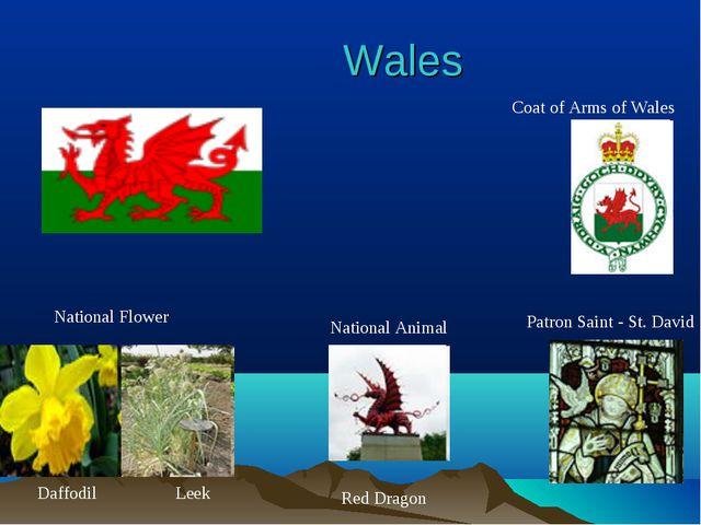 Wales National Flower National Animal Leek Daffodil Patron Saint - St. David...