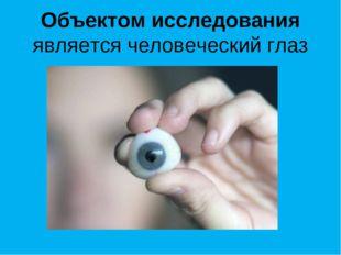 Объектом исследования является человеческий глаз