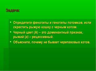 Задача: Определите фенотипы и генотипы потомков, если скрестить рыжую кошку с