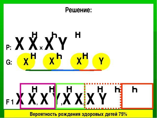 Решение: P: X X × X Y G: F 1 X X, X Y,X X, X Y X X X X Y Вероятность рождения...