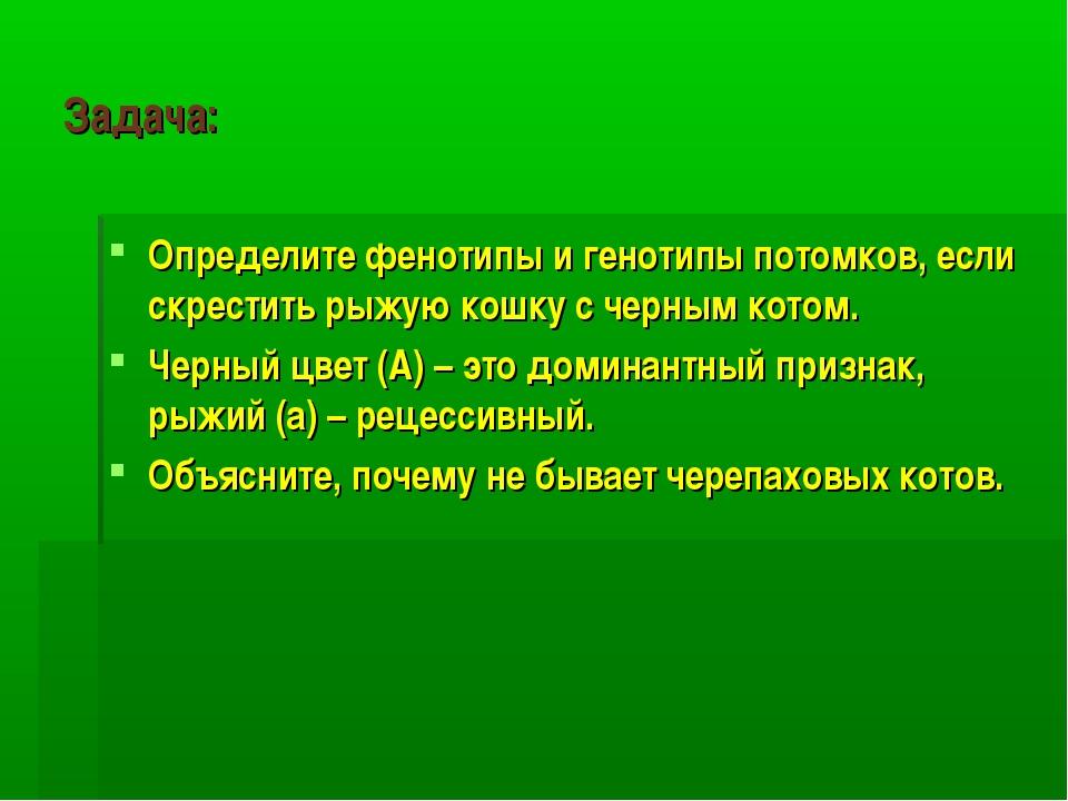 Задача: Определите фенотипы и генотипы потомков, если скрестить рыжую кошку с...