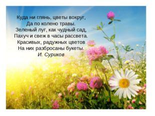 Куда ни глянь, цветы вокруг, Да по колено травы. Зеленый луг, как чудный сад,