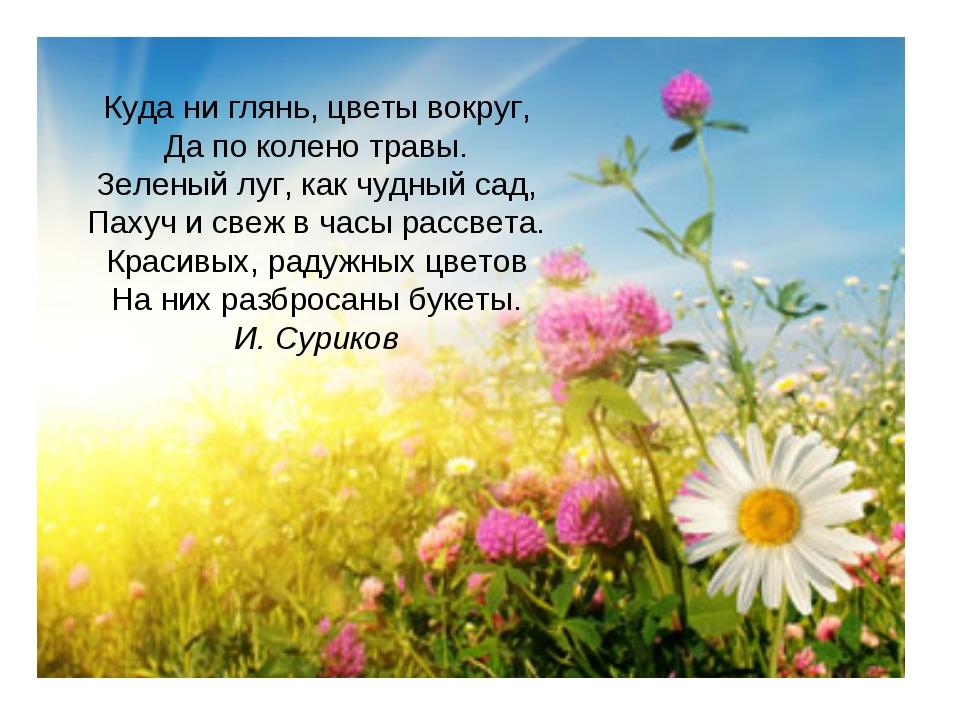 Куда ни глянь, цветы вокруг, Да по колено травы. Зеленый луг, как чудный сад,...