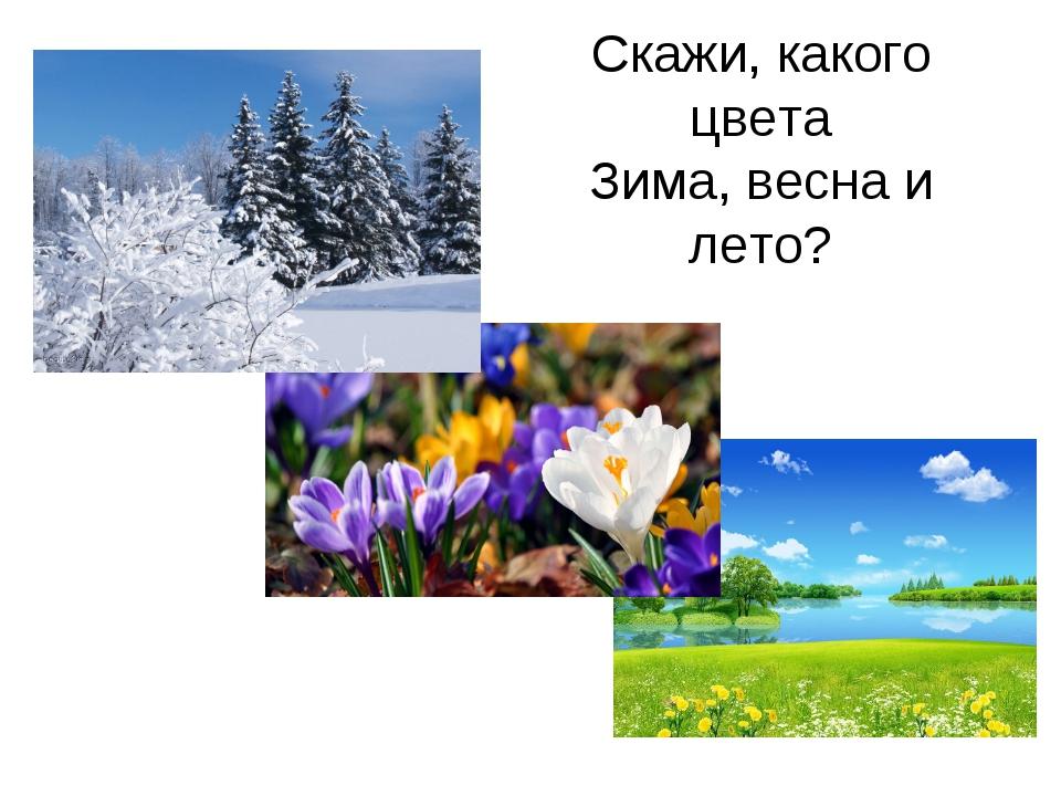 Скажи, какого цвета Зима, весна и лето?