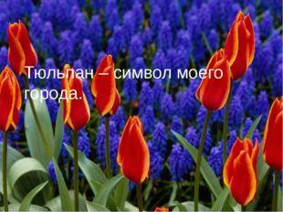 Тюльпан – символ моего города.