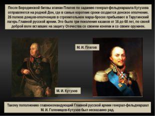 После Бородинской битвы атаман Платов по заданию генерал-фельдмаршала Кутузов