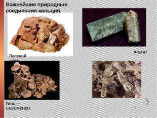 Полевой шпат Апатит Кальци́т, Гипс— CaSO4·2H2O. Важнейшие природные соедин