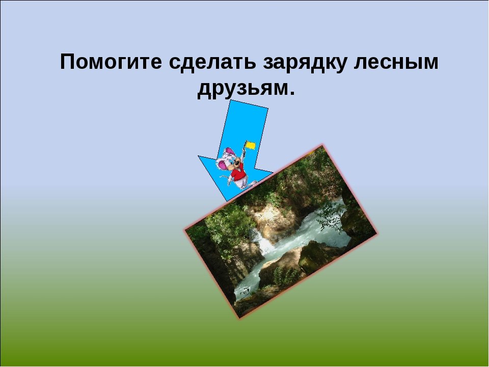 Помогите сделать зарядку лесным друзьям.
