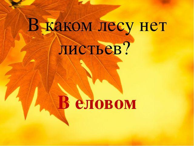 В каком лесу нет листьев? В еловом