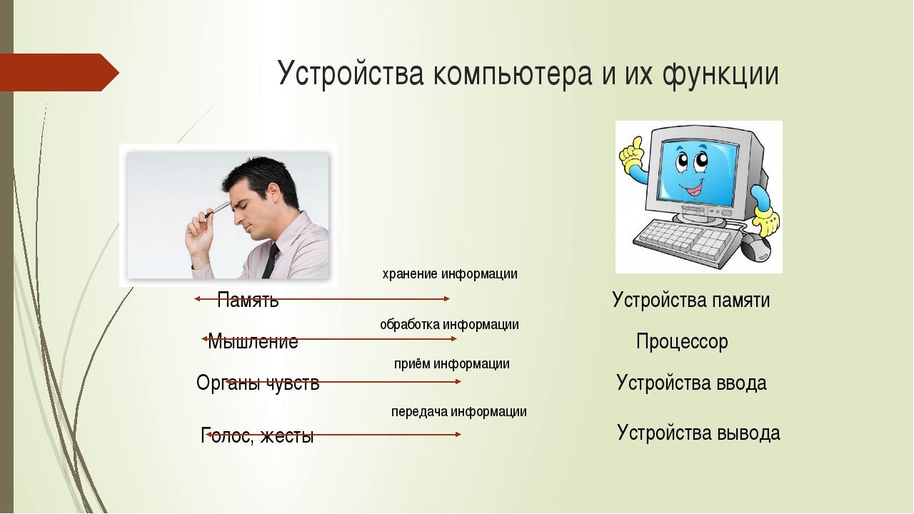 Устройства компьютера и их функции Память Мышление Органы чувств Голос, жесты...