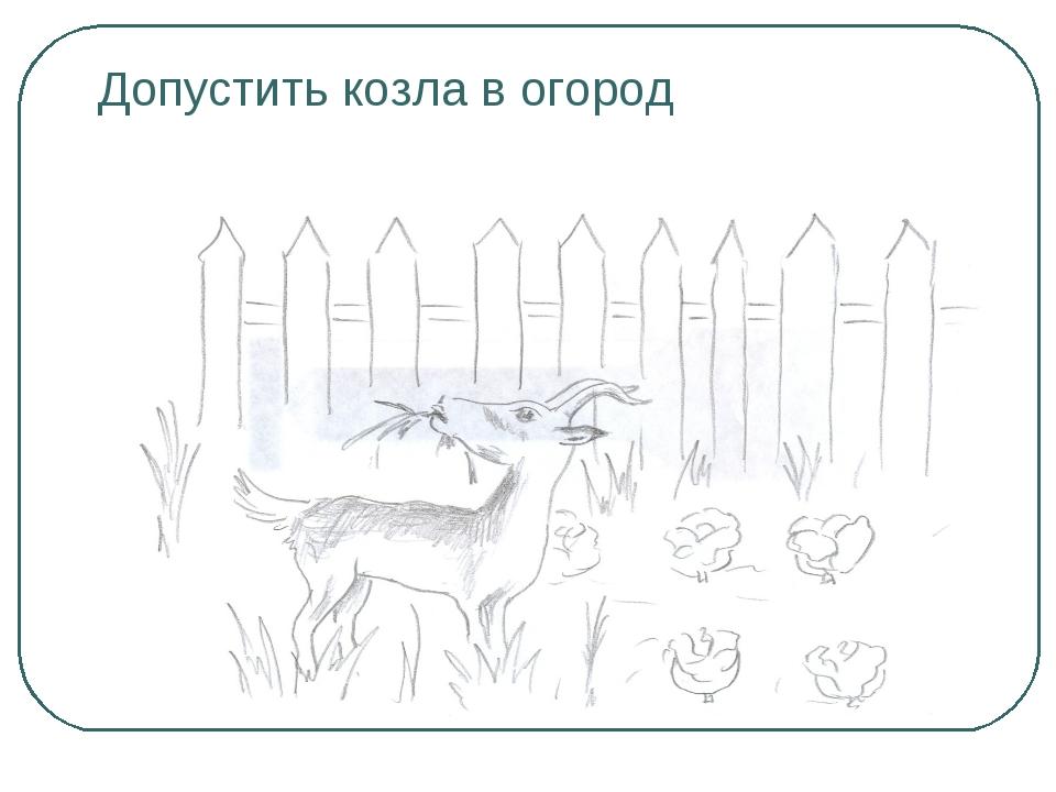 Допустить козла в огород