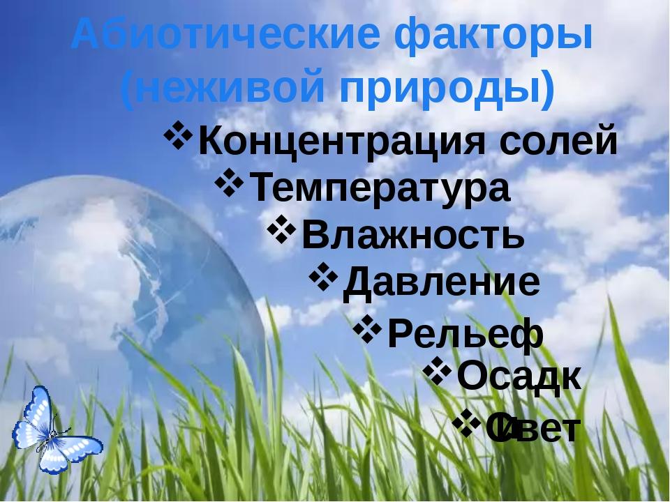 Солнечный свет, достигающий поверхности Земли, - основной источник энергии д...