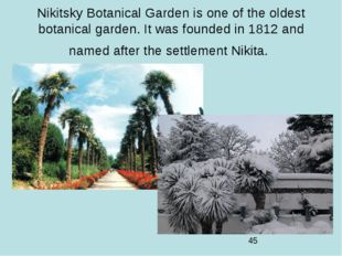Nikitsky Botanical Garden is one of the oldest botanical garden. It was found