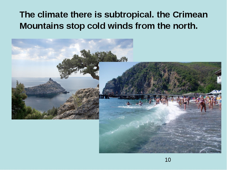 The climate there is subtropical. the Crimean Mountains stop cold winds from...