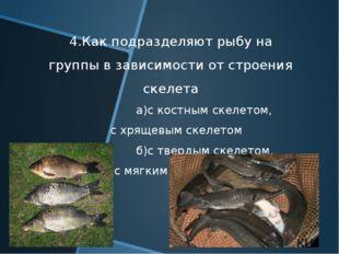 4.Как подразделяют рыбу на группы в зависимости от строения скелета а)с костн