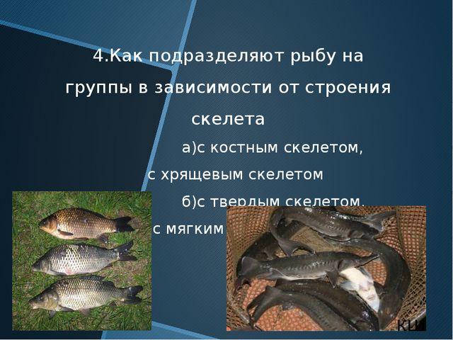 4.Как подразделяют рыбу на группы в зависимости от строения скелета а)с костн...