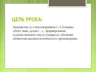 ЦЕЛЬ УРОКА: Знакомство со стихотворением С.А.Есенина «Поёт зима, аукает…», фо