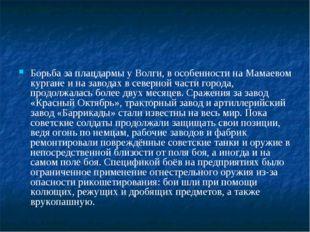 Борьба за плацдармы у Волги, в особенности на Мамаевом кургане и на заводах в