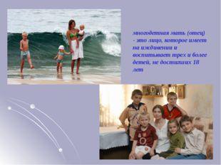 многодетная мать (отец) - это лицо, которое имеет на иждивении и воспитывает